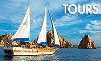 Tours in Cabo